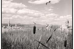 Q3_19_07-Mono-Lake
