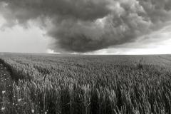 SW2019_130_Summer-Storm